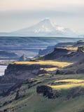 Valle del río Columbia con el Mt hood Imagen de archivo libre de regalías