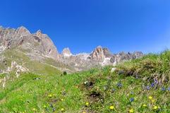 Valle del Vajolet in dolomia, alpi di Italien Immagine Stock