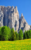 Valle del Vajolet in dolomia, alpi di Italien Fotografia Stock