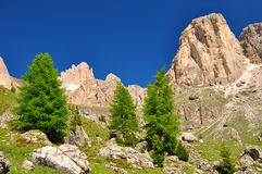 Valle del Vajolet in Dolomites,Italien Alps Royalty Free Stock Photography