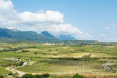 Valle del viñedo en el rioja, España Fotografía de archivo libre de regalías