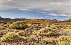 Valle del vulcano Teide Immagini Stock Libere da Diritti