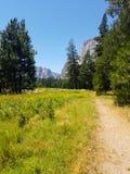Valle del Yosemite alla vista del traforo Fotografia Stock Libera da Diritti