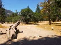Valle del Yosemite alla vista del traforo Immagine Stock Libera da Diritti