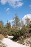 Valle dell'alpe Fotografia Stock Libera da Diritti