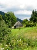 Valle dell'alta montagna in Carpathians Immagini Stock