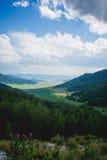 Valle dell'Altai Immagine Stock