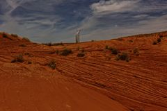 Valle dell'antilope e pianta navajo del carbone fotografie stock libere da diritti