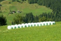 Valle della montagna in alpi austriache in estate Immagini Stock Libere da Diritti