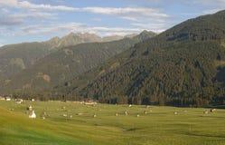 Valle della montagna in alpi austriache in estate Immagine Stock Libera da Diritti