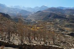 Valle della montagna in autunno Fotografie Stock Libere da Diritti