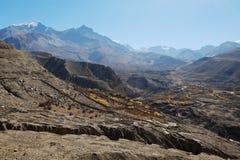 Valle della montagna in autunno con gli alberi ingialliti Fotografia Stock Libera da Diritti