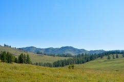 Valle della montagna con gli alberi ed il cielo blu Immagini Stock Libere da Diritti