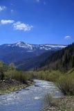 Valle della montagna con il fiume in Carpathians Immagine Stock Libera da Diritti