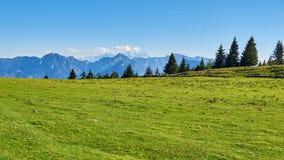 Valle della montagna di autunno al giorno soleggiato con cielo blu, la foresta e l'erba verde in Austria, regione di Salzkammergu fotografie stock