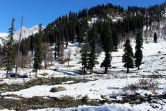 Valle della montagna di Snowy nel Kashmir in India Fotografie Stock Libere da Diritti