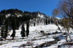 Valle della montagna di Snowy nel Kashmir in India Immagine Stock