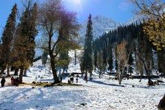 Valle della montagna di Snowy nel Kashmir in India Fotografie Stock