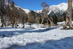 Valle della montagna di Snowy nel Kashmir in India Fotografia Stock Libera da Diritti