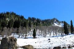 Valle della montagna di Snowy a Sonmarg, Kashmir in India Immagine Stock