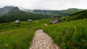 Valle della montagna di Tatra Fotografia Stock