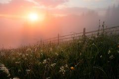 Valle della montagna durante l'alba Fotografia Stock