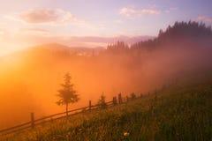 Valle della montagna durante l'alba Fotografia Stock Libera da Diritti