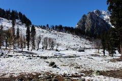 Valle della montagna nel Kashmir, India Immagini Stock