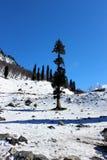 Valle della montagna della neve di inverno Fotografia Stock