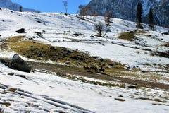Valle della montagna della neve di inverno Immagine Stock Libera da Diritti