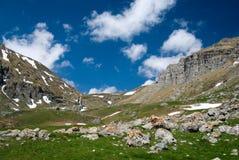 Valle della montagna in Romania Fotografia Stock