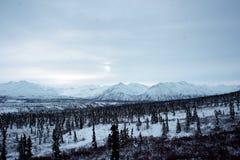 Valle della neve immagini stock