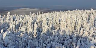 Valle della neve al sole Immagine Stock Libera da Diritti