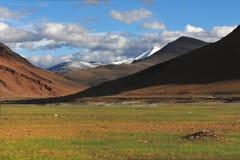 Valle delle alte montagne: nella priorità alta un prato, una piccola erba verde su terra marrone nelle montagne del fondo, il sol Fotografia Stock