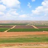 Valle di agricoltura della primavera Fotografia Stock