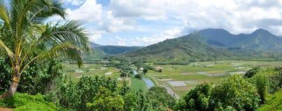 Valle di agricoltura di Kauai Fotografia Stock