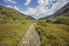 Valle di Akkem Montagna di Altai La Russia Immagini Stock Libere da Diritti
