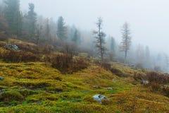 Valle di Akkem nel parco naturale delle montagne di Altai Immagini Stock