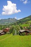 Valle di Alpbach, Tirol, Austria Fotografie Stock Libere da Diritti