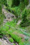Valle di bellezza Fotografia Stock
