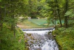 Valle di bistrica di Kamniska, Slovenia Fotografie Stock Libere da Diritti