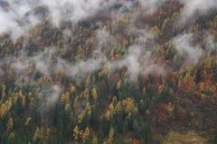 Valle di Campiglio Fotografia Stock Libera da Diritti