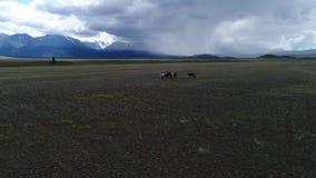 Valle di Chulyshman, valle sparata aerea, valli selvagge archivi video