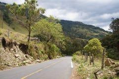 Valle di Cocora vicino a Salento, Colombia Immagini Stock