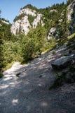 Valle di dolina di Prosiecka con le rocce del calcare, la foresta ed il chiaro cielo in Slovacchia Immagini Stock