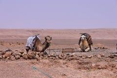 Valle di Draa vicino a Ouarzazate nella m. Immagine Stock