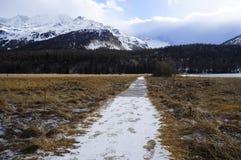 Valle di Engadin nel villaggio della Svizzera Sils Maria con neve sulle montagne dell'alpe Fotografia Stock