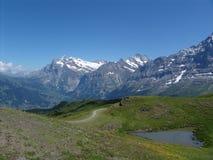Valle di Grindelwald da Kleine Scheidegg Immagine Stock