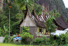 Valle di Harau in Sumatra ad ovest, Indonesia Fotografia Stock Libera da Diritti
