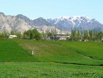 Valle di Hissar del Tagikistan Immagine Stock